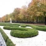siepi di bossolo nel parco disegni geomaetrici