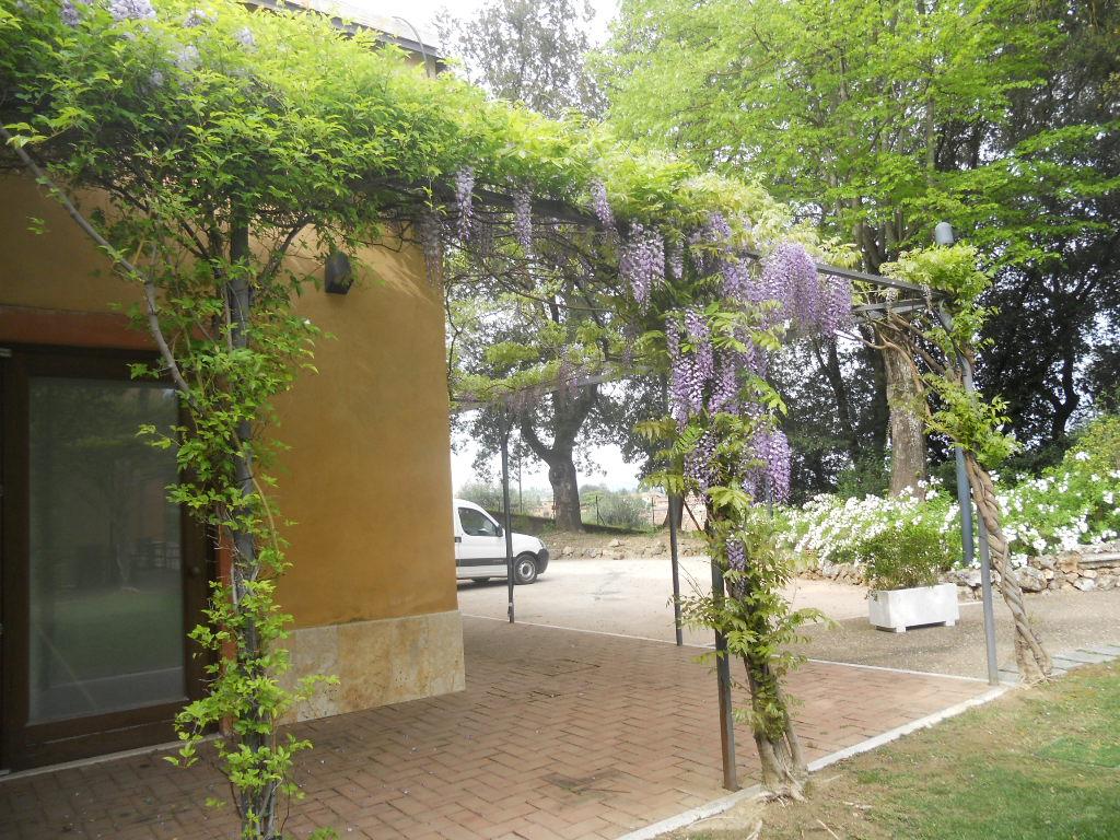 La finestra di stefania pergolato di glicine in piena - Pergolati da giardino ...