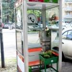 piante-al-telefono-milano