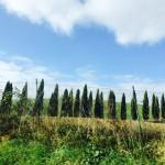 percorso della via Francigena toscana