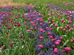giardino più bello del Veneto