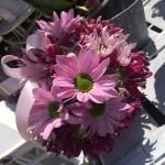quali fiori regalare per San Valentino a un uomo