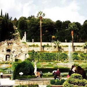 Il giardino di Pinocchio