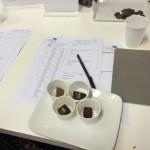 campioni di cioccolato per degustazione