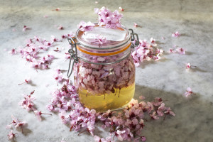 idee per usare i fiori del giardino in cucina