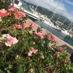 i fiori di yacht e garden a Genova