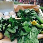 uova e verdure dell'orto del borro