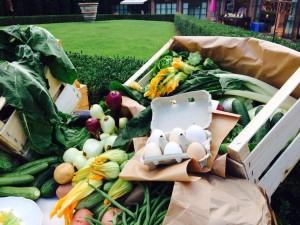 come allestire un banco di verdura