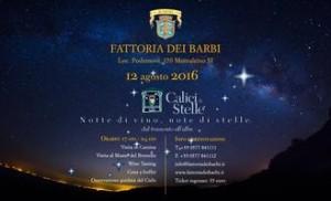 Calici di stelle a Montalcino