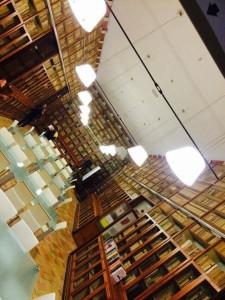 Interno della biblioteca.jpg