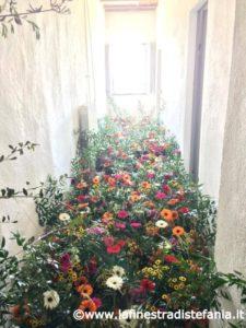 corridoio pieno di fiori colorati, Corridor full of colorful flowers