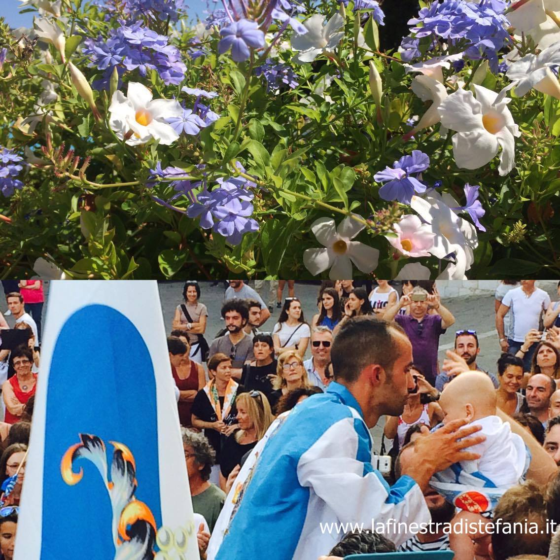 compositions of white and blue flowers. i colori della contrada dell'Onda