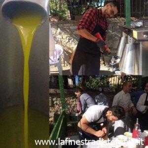 Dove comprare l'olio buono in Toscana