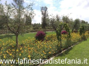flowerbeds with yellow and pink flowers, aiuole con fiori gialli e rosa