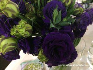 fiori blu per bouquet d SPOSA E COMPOSIZIONI FLOREALI