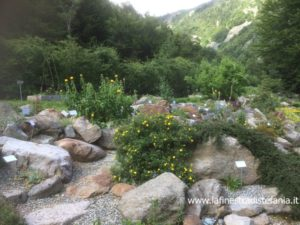 cosa vedere sul Sacro Monte di Oropa