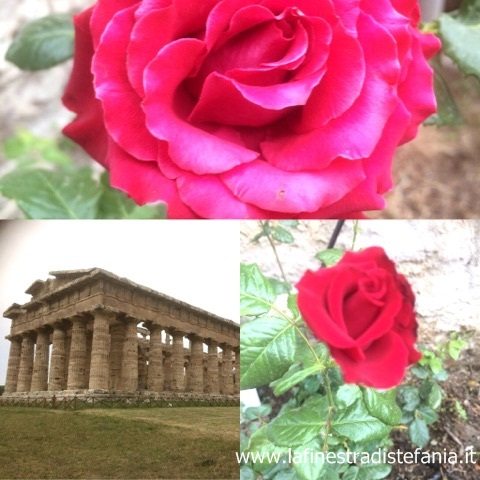 Cosa vedere a Paestum, What to see in Paestum